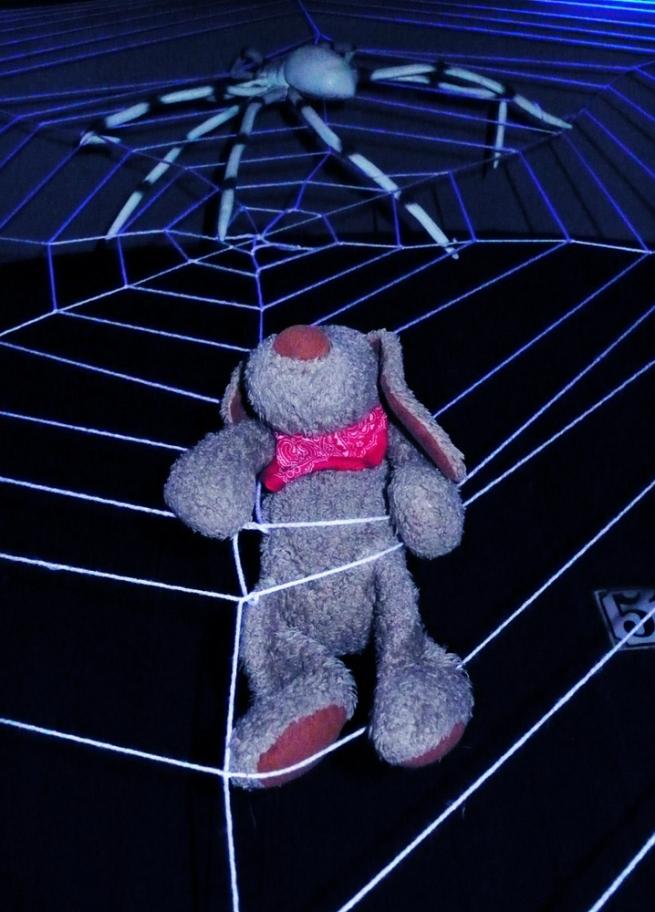 Fikki im Netz der Spinne